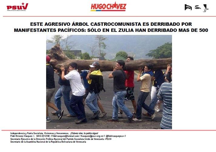 Este árbol castrocomunista es derribado por manifestantes pacíficos.Fidel Ernesto Vasquez