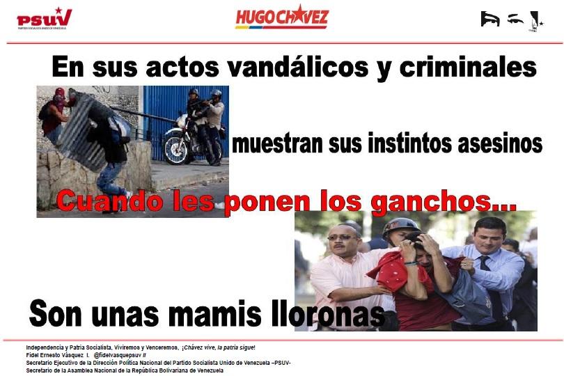 los guarimberos llorones-Fidel Ernesto Vasquez