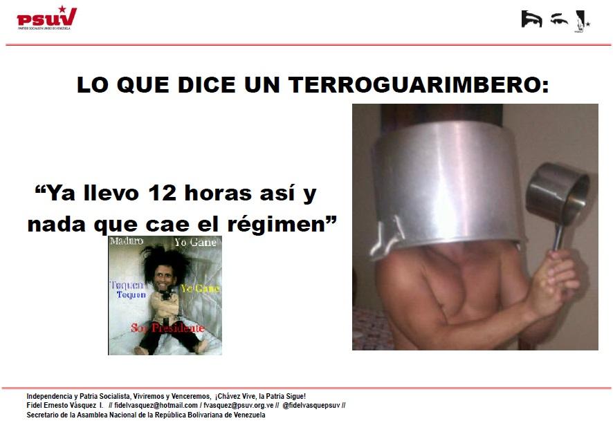LO QUE DICE UN TERROGUARIMBERO
