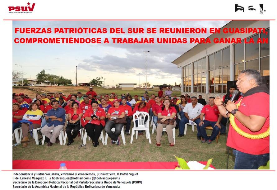 FUERZAS PATRIÓTICAS DEL SUR SE REUNIERON EN GUASIPATI